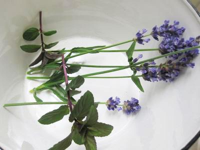 lavendermint-1.jpg