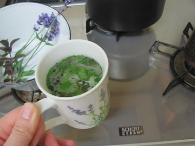 lavendermint-2.jpg
