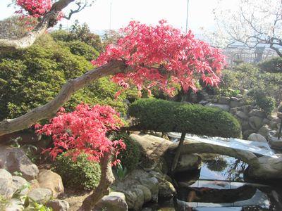 springgarden-1.jpg