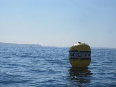 zushiregatta2011-9.jpg